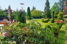 Garten-Sommer-3